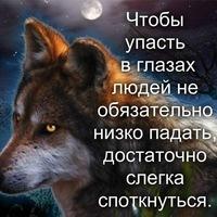 Анкета Сергей Василишин