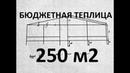 САМАЯ БЮДЖЕТНАЯ ТЕПЛИЦА на 250 м2, своими руками, и стоимость материалов