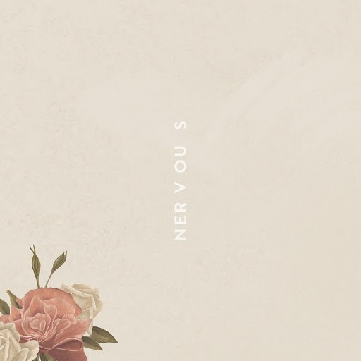Shawn Mendes album Nervous