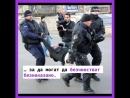 Има групи от хора с власт и пари, които нарочно пречат и които поддържат този хаос и беззаконие в България!
