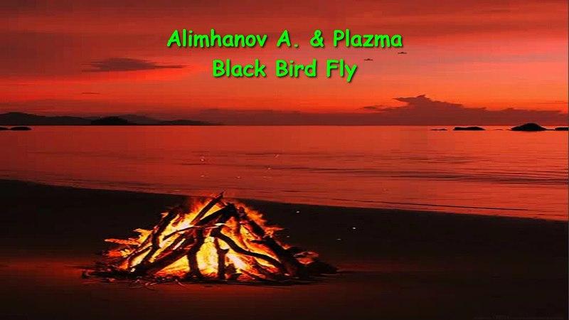 Alimhanov A. Plazma - Black Bird Fly