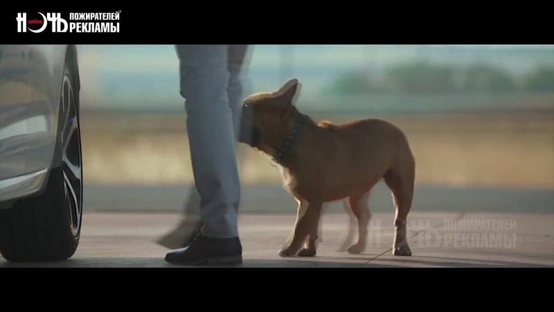 NEW 2016 Citroen собачья разминка Ночь пожирателей рекламы путешествия на автомобиле