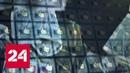 Хакерам похитили личные данные 30 млн пользователей Facebook - Россия 24