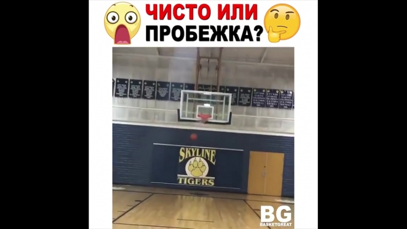 Basketball Vine 1260