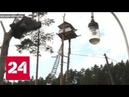 Жилплощадь на дереве законно или нет Россия 24