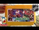 Картридж для Денди с игрой ХОККЕЙ НХЛ лучшие команды мира NHL Hockey Pro Sport Hockey Dendy Игра 90-х