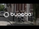 Bugaboo Fox Classic Complete