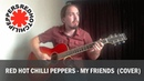 Red Hot Chilli Peppers RHCP - My Friends cover