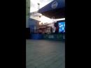 Рок музыканты помогают детям - Московский фестиваль волонтёров в саду Эрмитаж