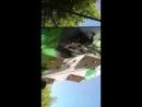 Биіктігі 12м жасанды тауға шыққалы тұрған сәттен естелік