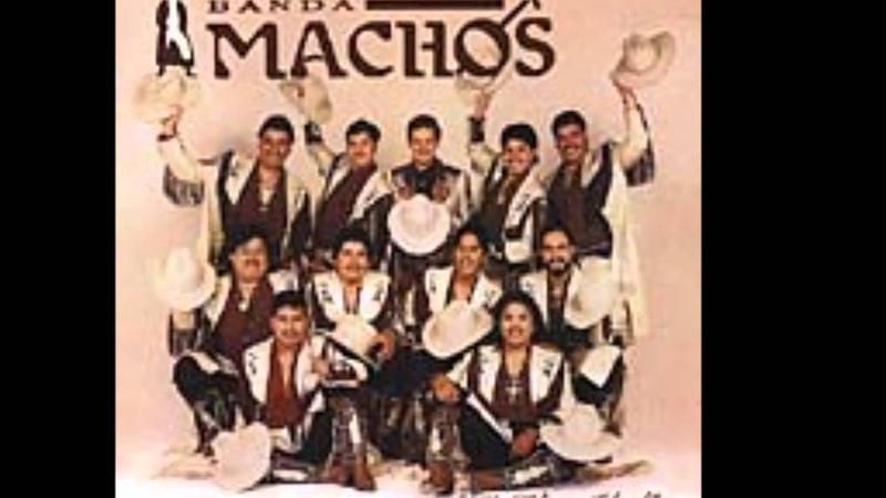 SUAVE Y TIERNO (BANDA MACHOS )