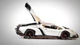 Радиоуправляемая машина MZ Lamborghini Veneno 114 - 2289J