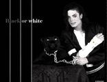 Michael Jackson - Black Or White (Acapella)