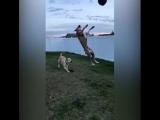 Даже когда у собак что-то не получается, они делают это красиво!)))