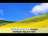 На теплоходе музыка играет, Зарубина Ольга караоке и текст песни