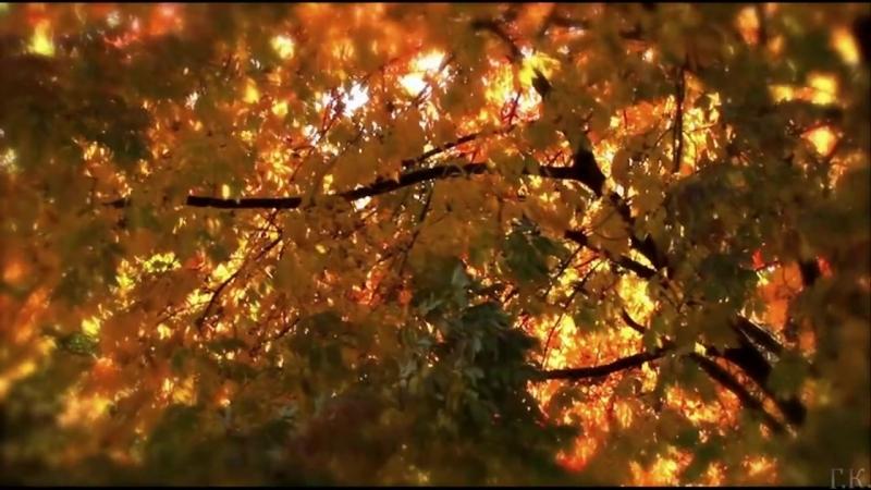 Черный кофе Листья - С ветки падающий лист Переступи порог 1987.mp4