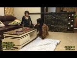 Chinese mistress and her lesbian slave 4