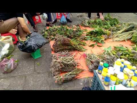 Chợ hoa lan Bắc Giang 17 11 2017