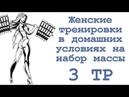 Женские тренировки в домашних условиях на набор массы 3 тр