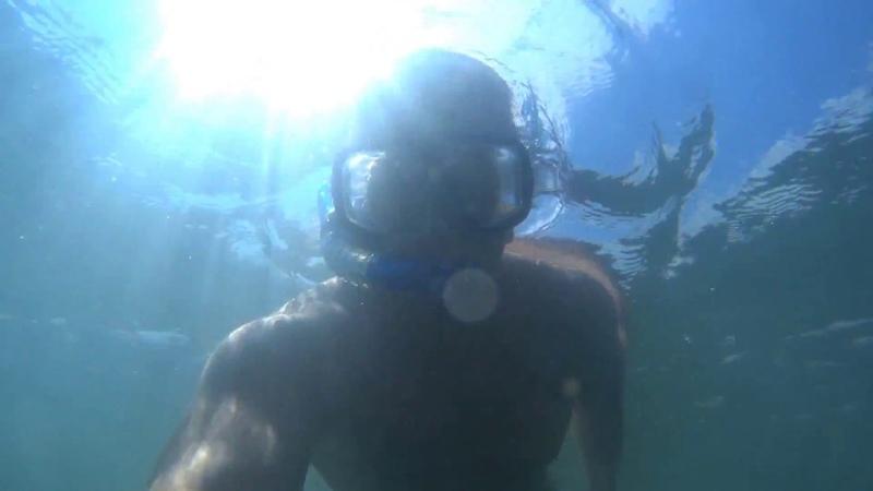 Экшен камера SONY HDR AS50 Сьемка под водой