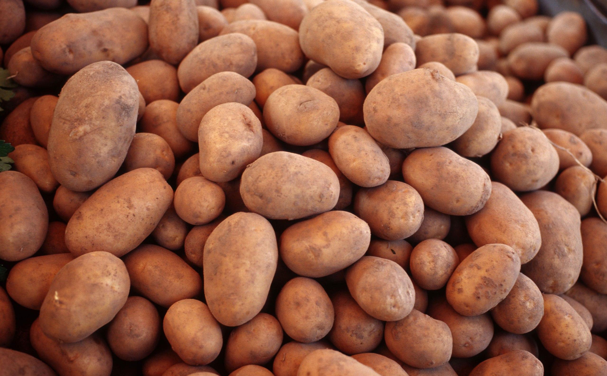 Россия пригрозила Белоруссии ограничениями на ввоз картофеля