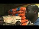 Unfairer Welthandel - EU Subventionen zerstören lokale Märkte Afrikas