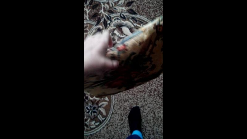 Video_2018-09-29T10.54.21.mp4