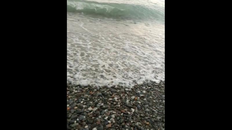 Артурик, море, тапок😆