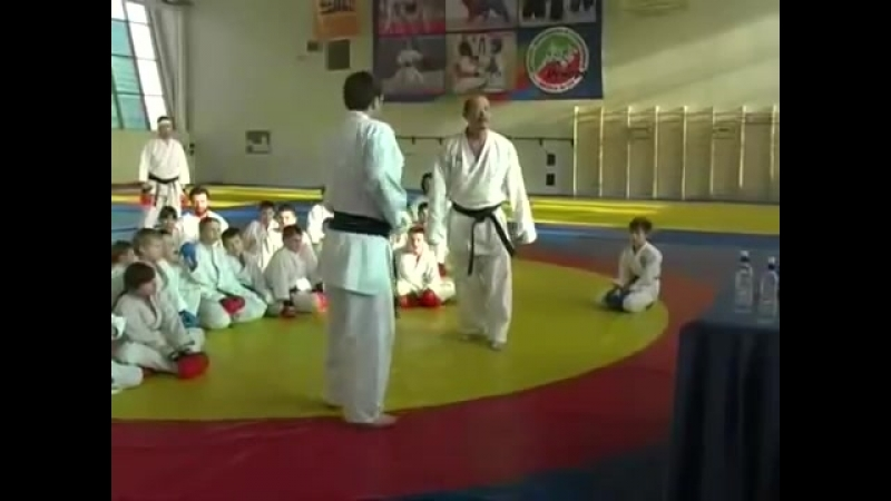 Seiji Nishimura. Seminar in Moscow 2010 (Punches, Sweeps and Throws)