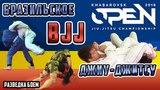 BJJ Бразильское джиу-джитсу Khabarovsk OPEN