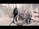Денис Майданов «Тишина» (Официальный клип)