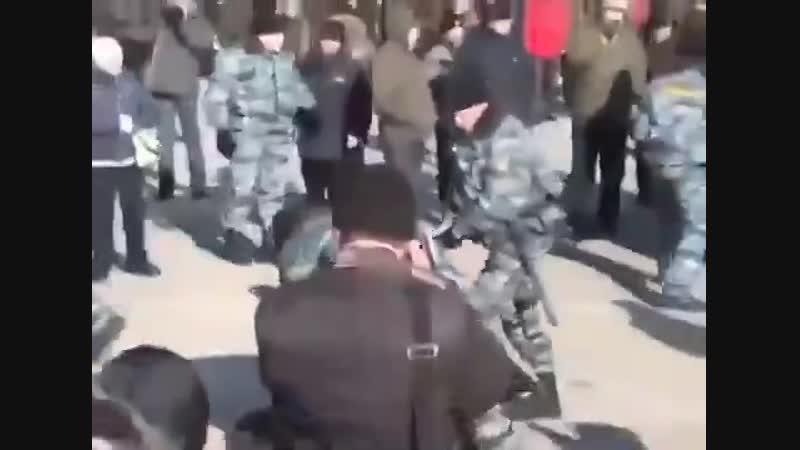 Жители Владивостока решили просто походить хороводом вокруг елочки и загремели