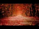 САМАЯ ЛЮБИМАЯ - Валерий Курас