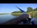 Карась на боковой кивок в озере видео