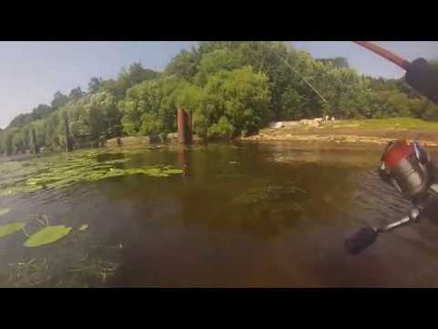 рыбалка Санкт Петербург Средняя Невка