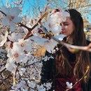 Алена Бессонова фото #43