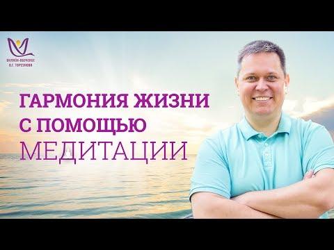 Олег Михеев Гармония жизни с помощью медитации 19.11.2018 г. (19:00 мск.)