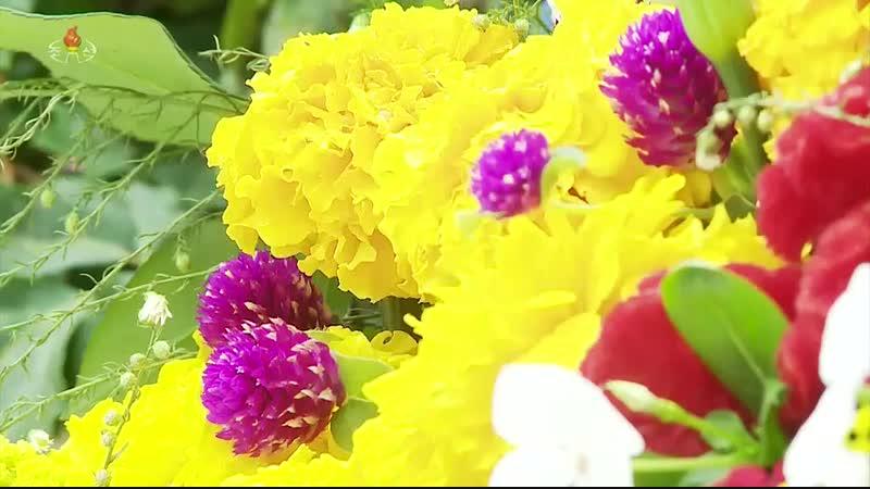 사계절 지지 않는 꽃 -평양화초연구소 말린꽃제작소-