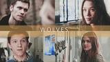 Sony Vegas I Wolves (SV 10)