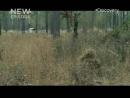 02 - Армейские снайперы