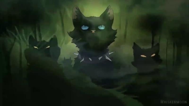 Коты-Воители ~CopyCat~ на русском