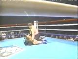World Fighting Federation 1997