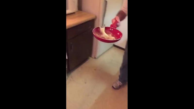 Мужик разделал небольшого сома и спустя полтора часа начал было обжаривать тушку, как вдруг она так яростно забилась на сковород