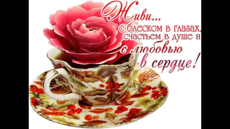 Doc208253179_501407942.mp4