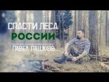 Экспедиция Русская тайга против уничтожения лесов России  Спасем Сибирь и Дальний Восток