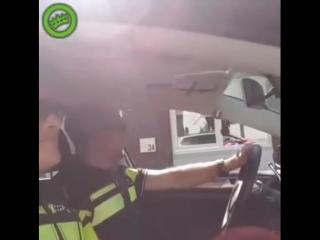 Ничего необычного, просто полицейские с чувством юмора