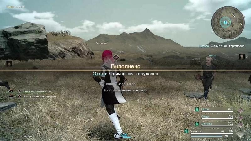 Final Fantasy XV Windows Edition Товарищи