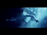 Отрывок из клипа Screaming - Димаш Кудайберген / Dimash Kudaibergen