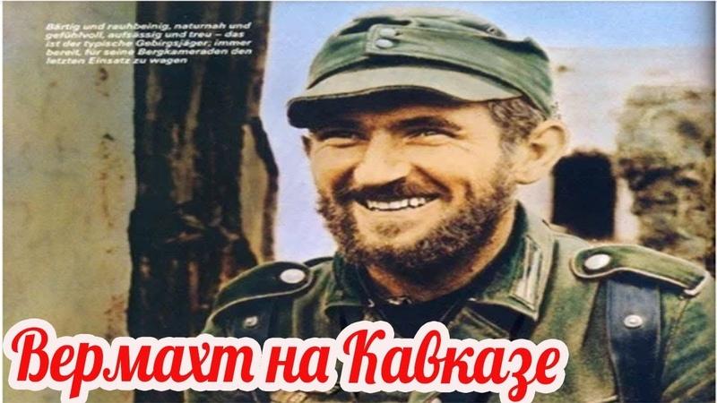 Горная дивизия Эдельвейс на Кавказе Почему немецкие егеря не пишут мемуары военные истории