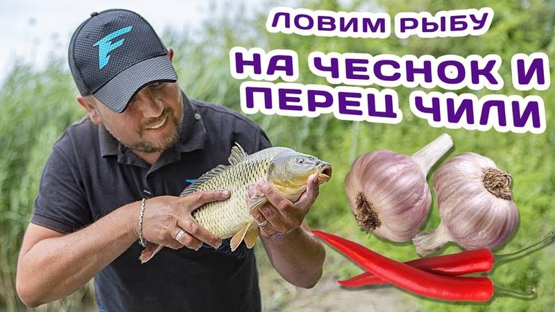 Ловим рыбу на чеснок и перец чили! Как сделать ликвид в домашних условиях!